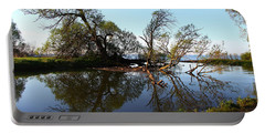 Portable Battery Charger featuring the photograph Quiet Reflection by Davandra Cribbie