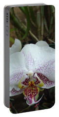 Rain Drops On Orchid Portable Battery Charger