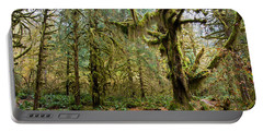 Rain Forest In Fall Portable Battery Charger
