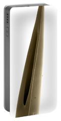 Rattlesnake Fang, Sem Portable Battery Charger by Ted Kinsman