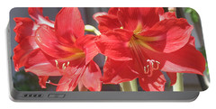 Red Amaryllis Portable Battery Charger by Kume Bryant