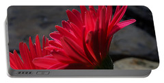 Portable Battery Charger featuring the photograph Red English Daisy by Joe Schofield