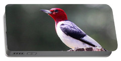 Red-headed Woodpecker - Statue Portable Battery Charger