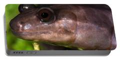 Red Hills Salamander Portable Battery Charger