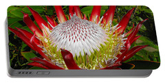 Red King Protea Portable Battery Charger by Rebecca Margraf