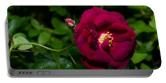 Red Rose In The Wild Portable Battery Charger