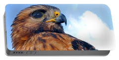 Portable Battery Charger featuring the photograph Red Shouldered Hawk Portrait by Dan Friend