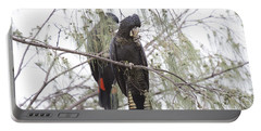 Red Tailed Black Cockatoos Portable Battery Charger by Douglas Barnard