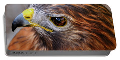 Red-tailed Hawk Close Up Portable Battery Charger
