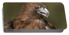 Portable Battery Charger featuring the photograph Red-tailed Hawk by Doug Herr