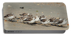 Resting Sandpipers Portable Battery Charger