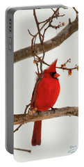 Righteous Cardinal Portable Battery Charger
