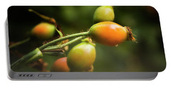 Portable Battery Charger featuring the photograph Rose Hips by Albert Seger