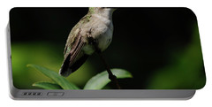 Ruby-throated Hummingbird Female Portable Battery Charger