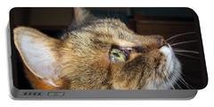 Portable Battery Charger featuring the photograph Runcius- The King Kitty by Ausra Huntington nee Paulauskaite