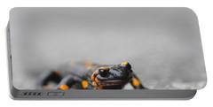 Salamander Portable Battery Charger
