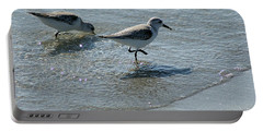 Sandpiper 7 Portable Battery Charger by Joe Faherty