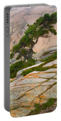 Portable Battery Charger featuring the photograph Schoodic Cliffs by Brent L Ander