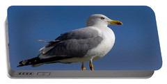 Portable Battery Charger featuring the photograph Seagull by David Gleeson
