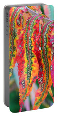 Sensuous Sumac Portable Battery Charger