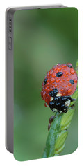 Seven-spotted Lady Beetle On Grass With Dew Portable Battery Charger