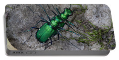 Six-spotted Tiger Beetles Copulating Portable Battery Charger by Daniel Reed