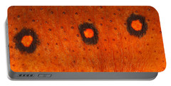 Skin Of Eastern Newt Portable Battery Charger by Ted Kinsman