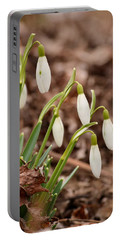 Snow Drops Portable Battery Charger