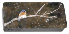 Snowy Bluebird Portable Battery Charger