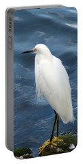Snowy Egret 1 Portable Battery Charger