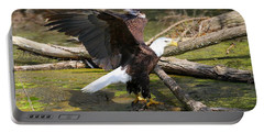 Portable Battery Charger featuring the photograph Soaring Eagle by Elizabeth Winter