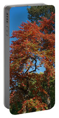 Portable Battery Charger featuring the photograph Soaring Fall by Joseph Yarbrough