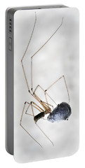 Spider Wrapping Fly Portable Battery Charger