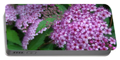 Spirea Portable Battery Charger