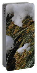 Spring Arrives Portable Battery Charger