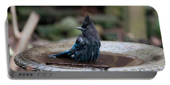 Portable Battery Charger featuring the digital art Steller Jay In The Birdbath by Carol Ailles