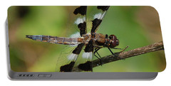 Summer Dragonfly Portable Battery Charger