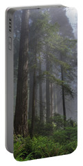 Sun Breaking On Redwoods Portable Battery Charger