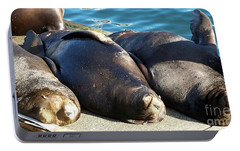 Portable Battery Charger featuring the photograph Sunbathing Sea Lions by Chalet Roome-Rigdon