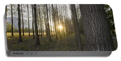 Sunlight In The Forest Portable Battery Charger