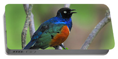 Superb Starling Portable Battery Charger by Tony Beck