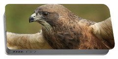 Portable Battery Charger featuring the photograph Swainson's Hawk by Doug Herr