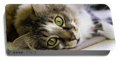 Tabby Cat Looking At Camera Portable Battery Charger