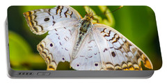 Portable Battery Charger featuring the photograph Tattered Moth by Shannon Harrington