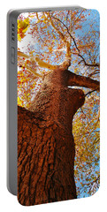 Portable Battery Charger featuring the photograph The Deer  Autumn Leaves Tree by Peggy Franz