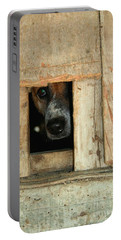 Portable Battery Charger featuring the photograph The Face Of Hoarding by Nola Lee Kelsey