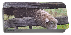 Portable Battery Charger featuring the photograph The Grass...on The Other Side by Lydia Holly