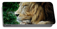 The Lions Sleeps Portable Battery Charger
