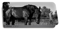 Portable Battery Charger featuring the photograph The Stallion by Davandra Cribbie