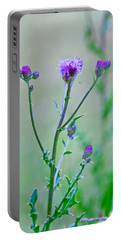 Thistledown Pastel Passion Portable Battery Charger
